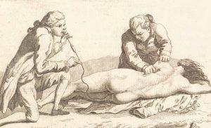 anus-revalidatie