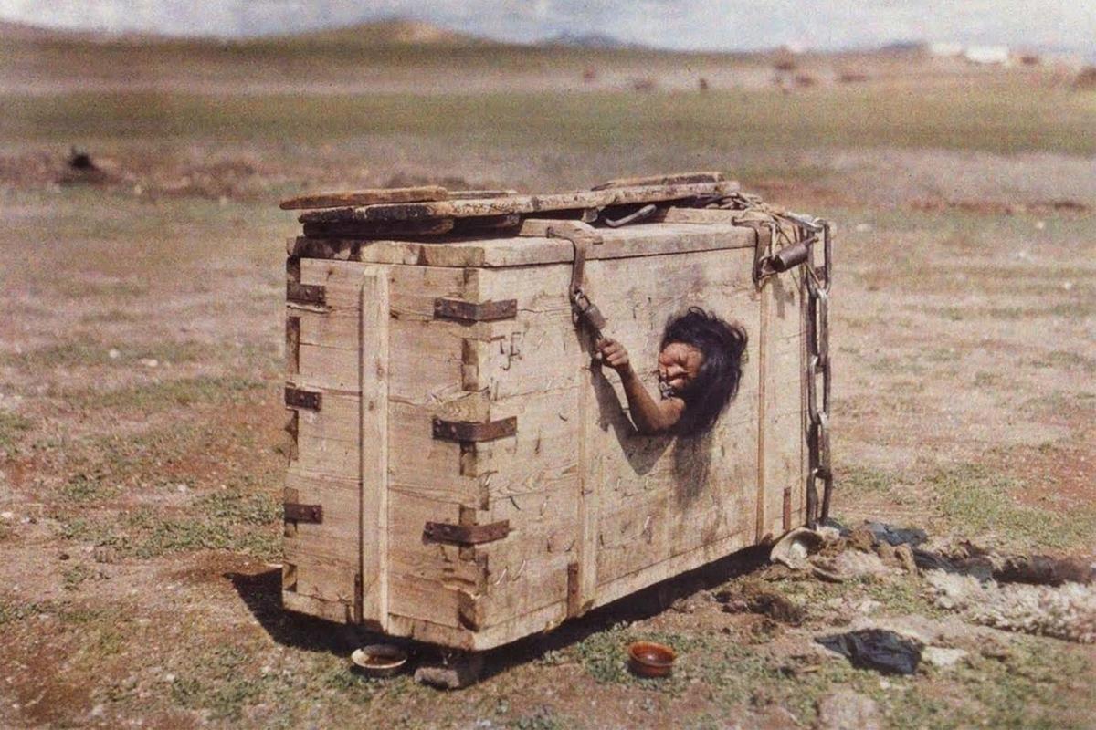 mongolische-inmuring-top