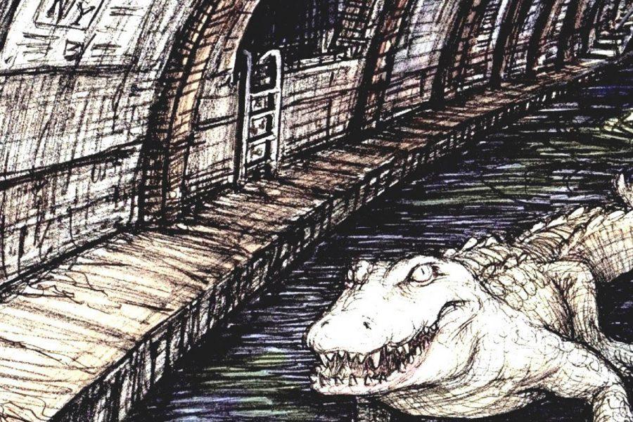 sewer-gator